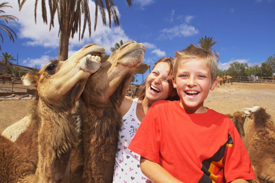 things-to-do-for-families-in-fuerteventura